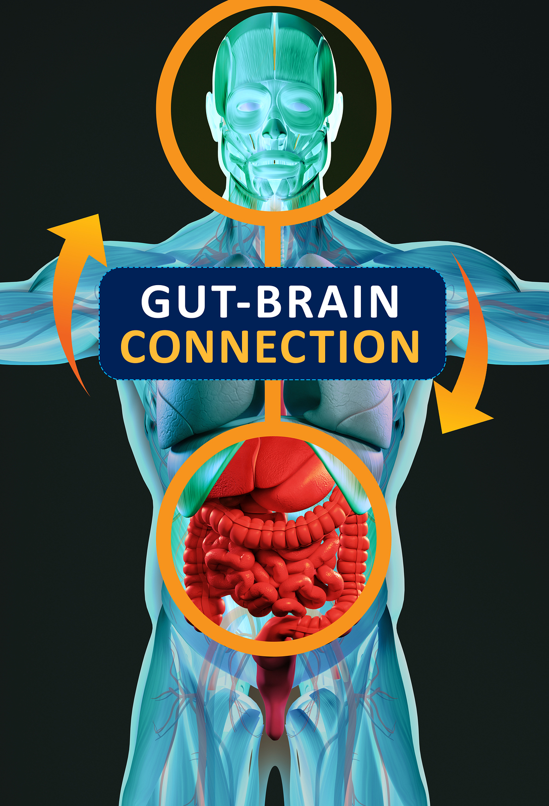 BE MINDFUL OF YOUR GUT